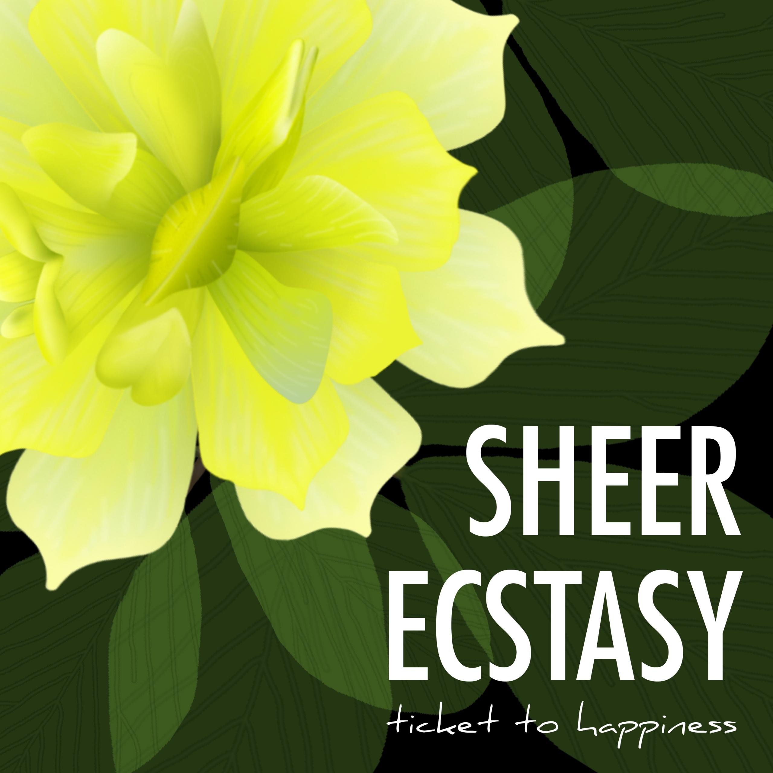 Sheer Ecstacy - Cover - Ticket to Happiness - Single - Folk - Folk Rock - Folk Pop - Music - MP3 Download
